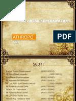 Athropoda SGD 7