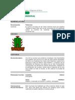 CARDONAL.pdf