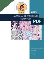 MANUAL DE TINCIONES.docx