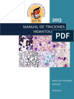 MANUAL DE TINCIONES.docx