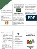 PLEGABLE_CLASIFICACION_DE_LOS_R.S.