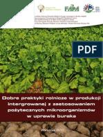 burak_web_2012