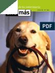 unomas30 Pequeños animales, consejos veterinarios, animales de compañia