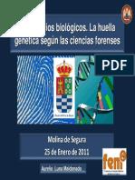 2011 01 25 Aurelio Genes Forense