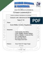 Sector Publico Gestion y Organizacion