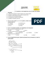 evaluare_initialstiinte