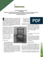 Articulo 4 - El Bambu