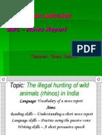 Proiectdelectie Animals in Danger