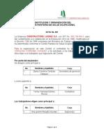 _CONSTITUCION_Y_+ORGANIZACIÓN_COPASO.doc_-1
