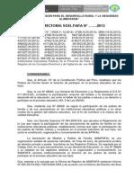 Res.directoral 001 2013