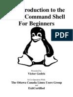 Shell Intro (PDF)