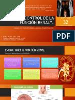 CAPITULO 32.-. CONTROL DE LA FUNCIÓN RENAL