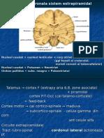 parkinson neuro