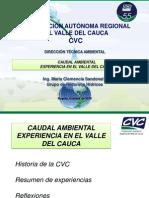 Corporación autónoma regional del Valle