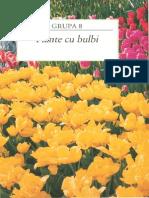 94141297 Gradinarit in Orice Anotimp 8 Plante Cu Bulbi