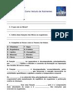 Alimentos e Nutrientes - Ficha de Trabalho  de preparação para o Teste