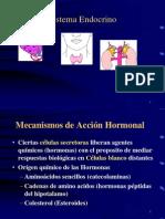 endocrino generalidades.ppt
