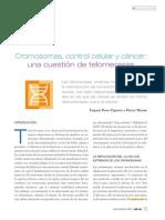 Cromosomas, control celular y cáncer