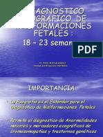 Malformaciones Fetales II Trimestre