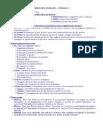 Dcho Romano (Bolilla 1)