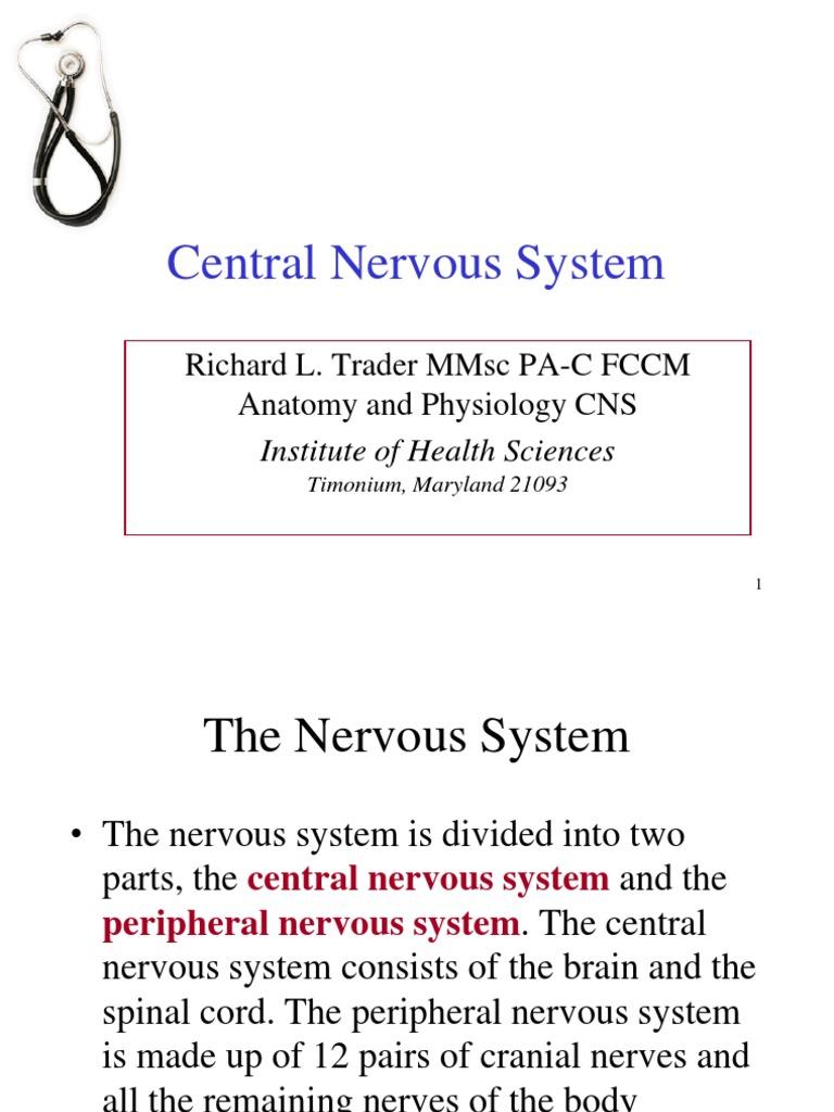 Overview of CNS Anatomy | Vertebral Column | Cerebrospinal Fluid