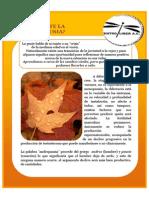 54.-Boletin Semanal Liber 7 de Agosto 2009 Existe Realmente La Andropausia