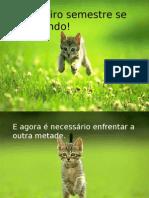 Feliz+Metade+Do+Ano