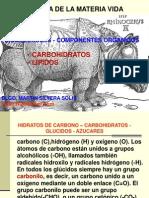CARBOHIDRATO LIPIDOS 3