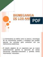 Biomecanica de Los Animales