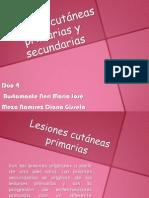 4lesionescutneasprimariasysecundarias-121226195552-phpapp02