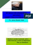 El factor de crecimiento nervioso. Rita Levi M.