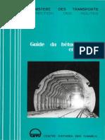 Guide Beton Coffre en Tunnel Cle5d3179