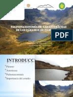 Exposicion_tesis_JEIMI