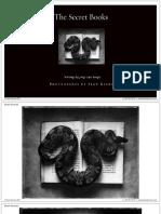 PDF Sean Kernan the Secret Books