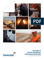 2010 Annual Report severstal