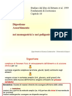 Digestione monogastrici ruminanti