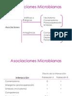 AsociacionesMicrobianas_20343