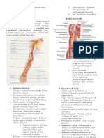 Upper Limbs Blood Supply and Nerves