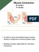 Bio 6 a Slides Skeletal Muscle Con