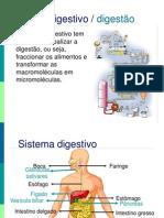 Sistema Digestivo 9cap1112