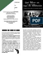 que hacer en caso de detencionBAJA.pdf