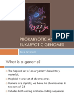 Prokaryotic and Eukaryotic Genomes