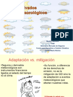 3.-Derivados-Meteorológicos-Dra.Rumbos