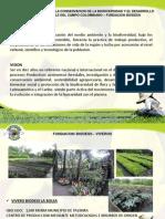 Presentacion Fundacion Biodess Viveros