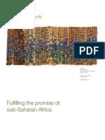 McK on Sub Saharan Africa June 1 2010(1)