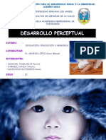 S,P Y M - DESARROLLO PERCEPTUAL EXPOSICIÓN