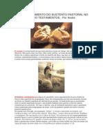 o Estabelecimento Do Sustento Pastoral No Antigo e Novo Testamentos