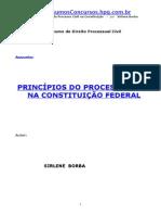 APOSTILA - Direito Processual Civil - Principios do Processo Civil na Constituição - Sirlene Borba
