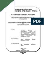 Perfil lMaribel Jimenez