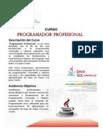 ProgramadorProfesional[1]